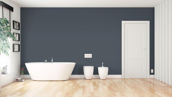 Oval shaped bath tub